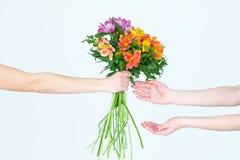 Organizzazione del regalo del fiore del presente del mazzo di Alstroemeria Immagine Stock