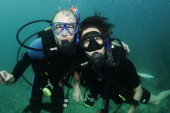 Organkoralle und Unterwasseratemgerättaucher Lizenzfreie Stockfotografie