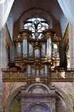 Organo Fotografie Stock Libere da Diritti