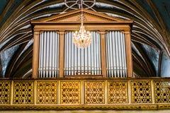 Organo Стоковое Фото