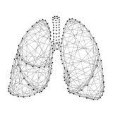 Organo dei polmoni di respirazione umano dal polygo futuristico astratto royalty illustrazione gratis