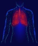 Organo interno di infezione polmonare umana dei polmoni Apparato respiratorio dentro la siluetta del corpo Poli Dots Triangle Pol Fotografia Stock