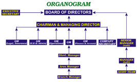 Organogram Royalty Free Stock Image