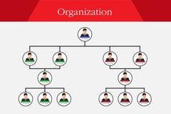 Organograma Infographics Imagem de Stock Royalty Free