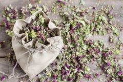 Oréganos secados em um saco de linho Imagem de Stock
