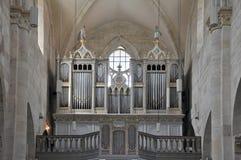 Organowe drymby Zdjęcia Royalty Free