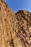 Organowe drymby - Twyfelfontein, Damaraland, Namibia Obrazy Stock
