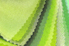 Organza för limefruktgräsplan Arkivfoton