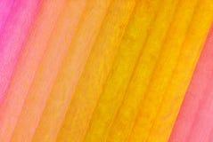 Organza fabric various color Royalty Free Stock Image