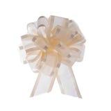 Organza ribbon bow Stock Images