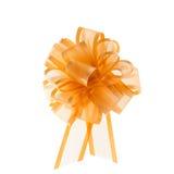 Organza ribbon bow Stock Photography