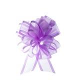 Organza ribbon bow Royalty Free Stock Photography
