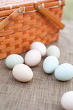 Orgnic Eggs on Table Royalty Free Stock Photos