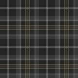 Orgoglio del modello senza cuciture del fondo di salmone del renq del tartan di caccia della Scozia Fotografia Stock Libera da Diritti