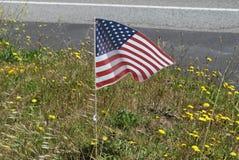 Orgoglio patriottico Fotografia Stock Libera da Diritti
