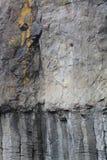 Orgues basaltiques, Saint-Flour, Cantal ( France ) Stock Images