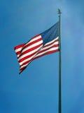 Orgulho americano Imagem de Stock