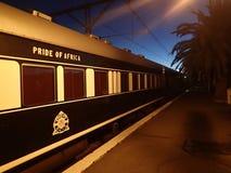 Orgulho do trem de África fotografia de stock
