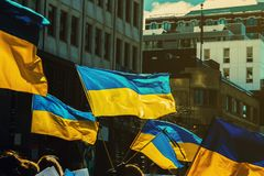 Orgulho ucraniano Foto de Stock