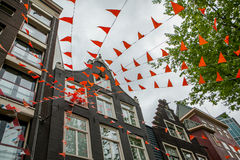 Orgullo anaranjado Foto de archivo libre de regalías