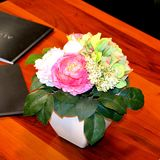 Nice flower on the table royalty free stock photo