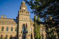 Oriëntatiepunt in Chernivtsi, de Oekraïne, orthodoxe kerk bij Universiteit de vroegere Metropolitans-woonplaats stock afbeelding