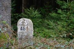 Oriëntatiepunt in het Bos Stock Fotografie