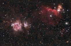 Orión, HorseHead y nebulosa de la llama Foto de archivo