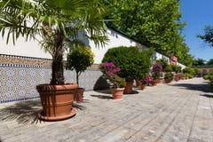 Orientała ogród - sąd morrocan dom Zdjęcie Stock