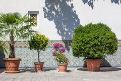 Orientała ogród - sąd morrocan dom Obrazy Royalty Free