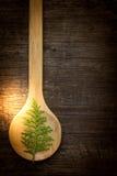 Oriental Arborvitae leaves. On wood spoon Royalty Free Stock Image