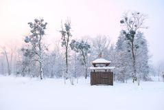 Oriental arbour covered in deep snow and tall trees Stock Photos