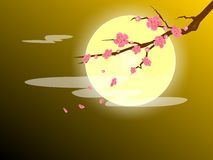 Oriental background. The peach flower among the moon light, very oriental nuances. can used as background, wallpaper, etc. vector illustration Stock Photography