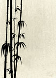 Oriental bamboo shoots on a stone texture. Silhouette oriental bamboo shoots on a stone texture Stock Photography