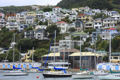 Oriental Bay, Wellington Stock Image
