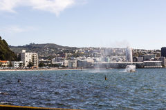 Oriental Bay, Wellington Royalty Free Stock Images
