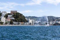 Oriental Bay, Wellington Royalty Free Stock Photos