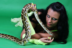 Oriental beauty with tiger Python. Royalty Free Stock Photography