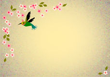Oriental blossom birds background Royalty Free Stock Photos
