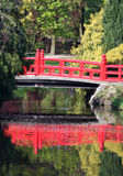 Oriental Bridge. Picturesque oriental Bridge over lake with water reflection in a beautiful garden / forest setting Royalty Free Stock Image