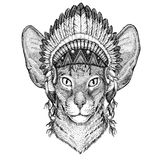 Oriental cat with big ears Wild animal wearing indian hat Headdress with feathers Boho ethnic image Tribal illustraton Stock Photo