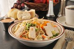 Oriental chicken salad Royalty Free Stock Photos