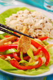 Oriental chicken with vegetables Royalty Free Stock Photos