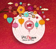 Oriental Chinese New Year 2019 blossom and lantern background. Year of the pig.  Royalty Free Stock Image