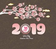 Oriental Chinese New Year 2019 blossom and lantern background. Year of the pig.  Royalty Free Stock Photos