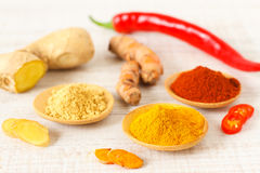 Oriental colorful mix of fresh and dry chilli pepper Royalty Free Stock Image