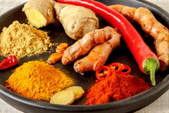 Oriental colorful mix of fresh and dry spices Stock Images