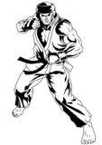 Oriental combat sport Stock Photography