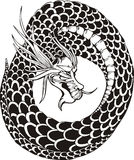 Oriental dragon circle Royalty Free Stock Images