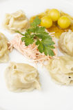 Oriental dumplings Royalty Free Stock Photo